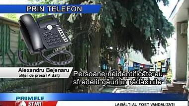 Trei brazi argintii din centrul oraşului Bălţi au fost vandalizaţi noaptea trecută