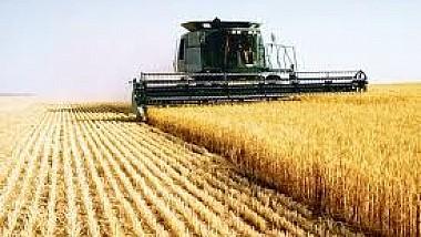 Producătorii agricoli au contramandat protestele anunţate pentru 23 noiembrie