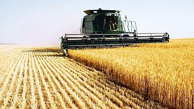 Parlamentul ar putea decide reducerea TVA-ului în agricultură