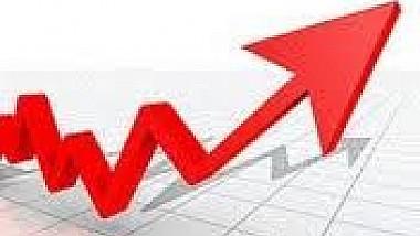 """Bugetul pe anul 2014 va fi construit pe o prognoză """"relativ pesimistă"""""""