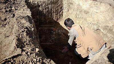 НЕОЖИДАННАЯ НАХОДКА! В частном хозяйстве провели археологические раскопки