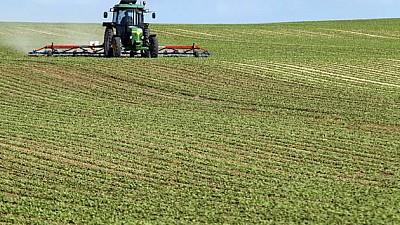 Mai multe oportunităţi. Încă opt fermieri moldoveni au fost certificaţi GlobalG.A.P