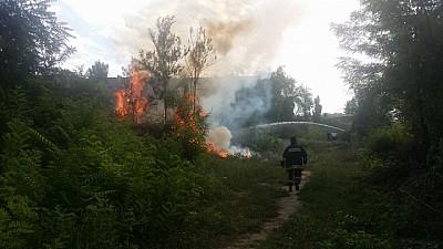 INCENDII DEVASTATOARE ÎN RUSIA. Peste 9000 de hectare de pădure au fost distruse de flăcări