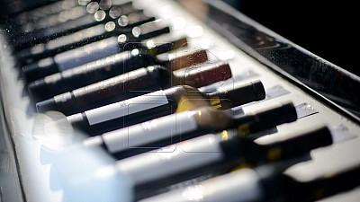 Ziua Naţională a Vinului va avea loc în PMAN pe 7 şi 8 octombrie. Sărbătoarea va aduna 47 de producători de vin autohtoni