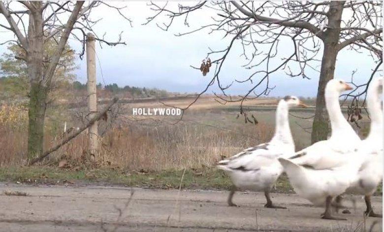 Hollywood-ul din Moldova