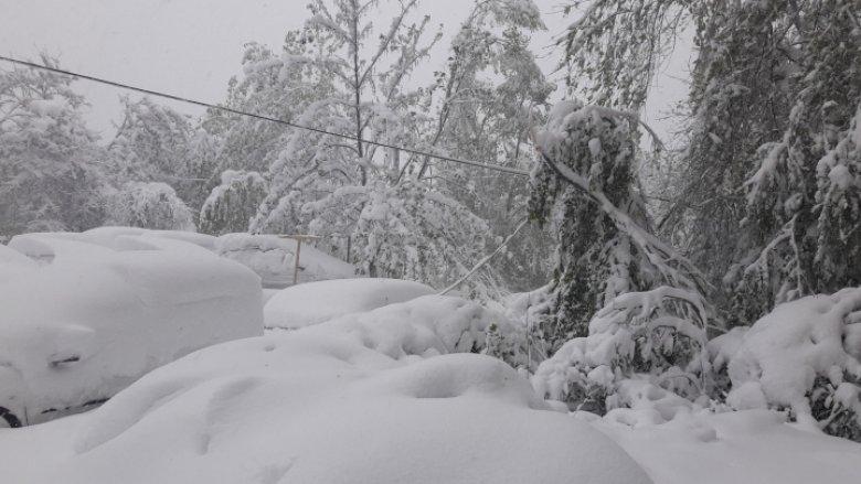 Imaginea zilei: Sosirea iernii sărbătorită la minus 56 de grade Celsius