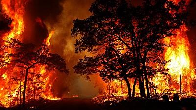 Forţă nestăpânită în statul american California. Pagubele provocate de incendii depăşesc 9 miliarde de dolari