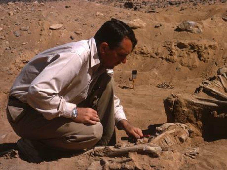 DESCOPERIRE SPECTACULOASĂ în Egipt. Ce au găsit arheologii în deșertul Sahara
