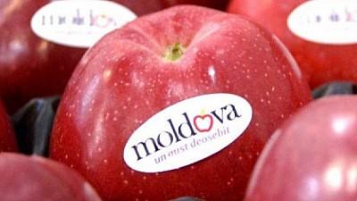 Merele din Republica Moldova vor fi exportate pe una dintre cele mai mari piețe din lume. Când va fi trimis primul lot de fructe