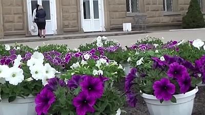 S-a inspirat de la Silvia Radu. Candidatul PPDA la funcţia de primar al municipiului Bălţi a adus în fața Primăriei peste 300 de ghivece cu flori