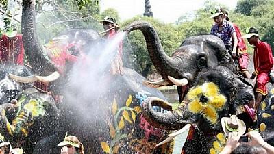 Imaginea zilei: Zeci de elefanţi din Thailanda au stropit turiştii cu apă. Ce semnifică acest obicei