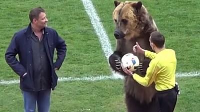 Imaginea zilei: O partidă de fotbal din Rusia, deschisă de către un urs brun. Cum a joglat acesta mingea