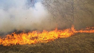 INCENDIU DEVASTATOR ÎN CALIFORNIA! Flăcările au distrus peste trei mii de hectare de pădure