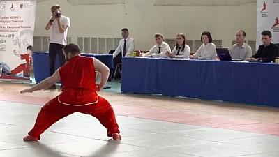 Wushu, arta de a lupta. Ce reprezintă și cine îl practică
