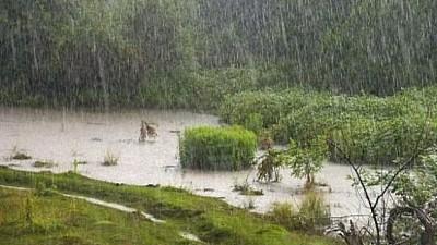 Ploile torenţiale au făcut RAVAGII în România. 13 judeţe din țara vecină au fost afectate de inundaţii, grindină şi vânt puternic