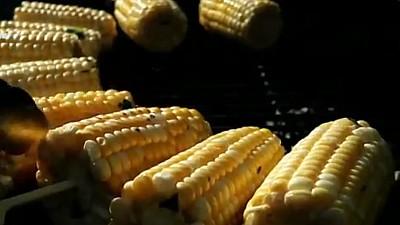 Porumbul - cea mai populară cereală. Cum poate fi gătit și ce conține acesta