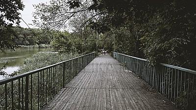 Plimbările, mai sigure. Podul din parcul Valea Trandafirilor din Capitală va fi renovat