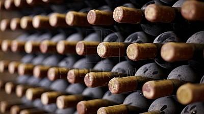 Vinurile moldoveneşti cuceresc piaţa din Canada. Un moldovean scoate din anonimat produsele autohtone