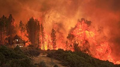 Privelişte dezolantă în California. Donald Trump a vizitat zonele devastate de incendii