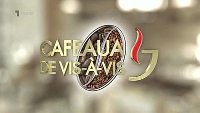 Cafeaua de vis-à-vis - ȘI TEHNICA NECESITĂ GRIJĂ (8 februarie 2017)